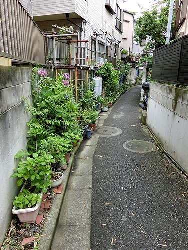 0611-14.jpg